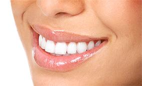 gebit, tanden
