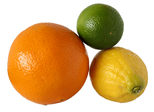 cirtrus fruit