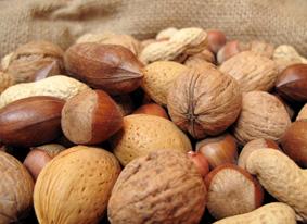 noten, voedingsregels