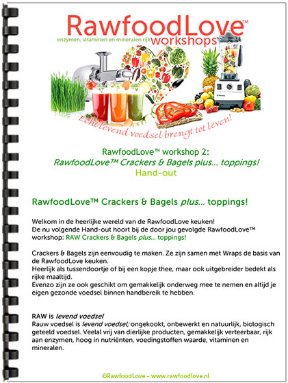 Rawfood Recepten Handout, handout rawfood, workshop